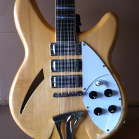 Fishbone FGH-NATURAL-12- String Electric Semi-Solid Body